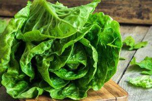 salade pour maigrir rapidement