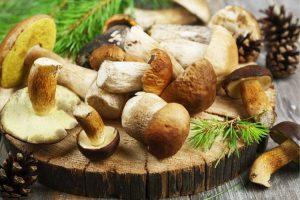 champignon chinois qui fait maigrir
