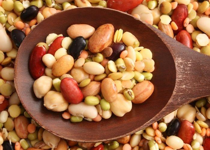 Quelles sont les sources du cholestérol ?
